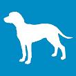 ASTRA LICKA avatar