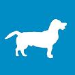 BISA avatar