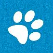 RAYARAGUA BILLABONG avatar